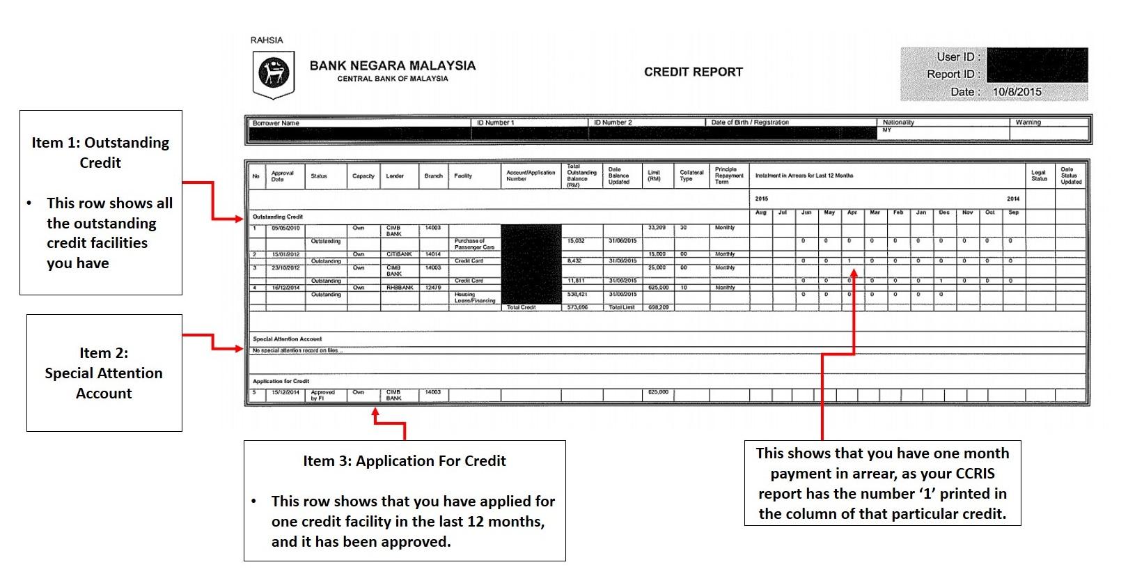 Sample Of CCRIS Report